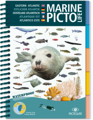 TSK Shop Freizeit Bücher Pictolife Östlicher Atlantik Marine