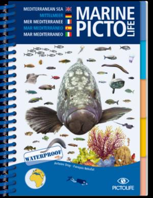 TSK Shop Freizeit Bücher Pictolife Mittelmeer Marine
