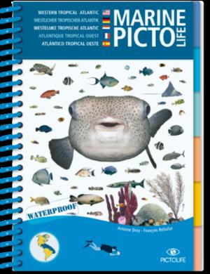 TSK Shop Freizeit Bücher Pictolife Westlicher Tropischer Atlantik Marine